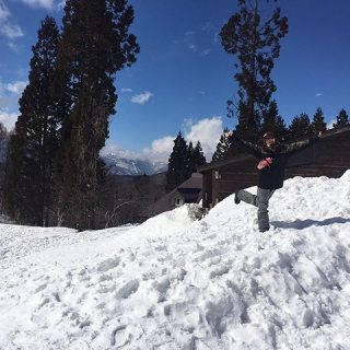雪と木々と晴天