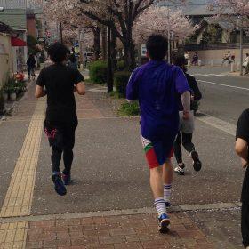 大好評!! 春を愛でる、街路樹の桜を眺めながらのランニング
