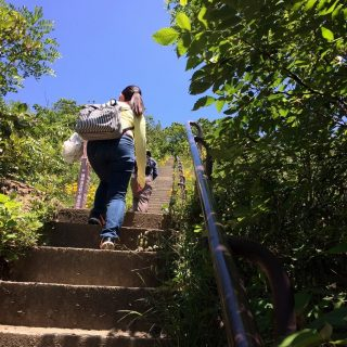 登山途中の急階段