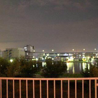 高速道路の灯りと夜の海。