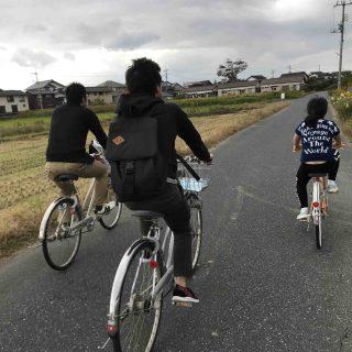 自転車で青空のもとススキとセイタカアワダチソウを眺める