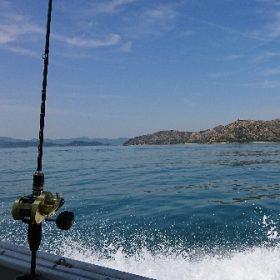 お気軽に船での鯛釣り